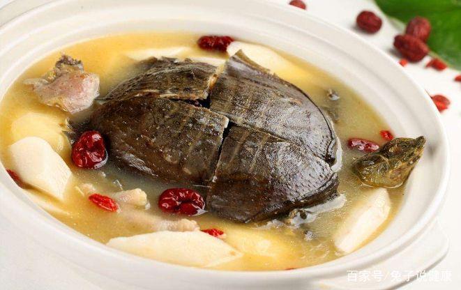 甲鱼炖什么汤最有营养? 第1张