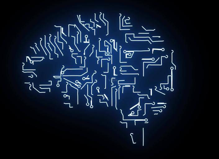 大脑是可以被驯化的 第1张